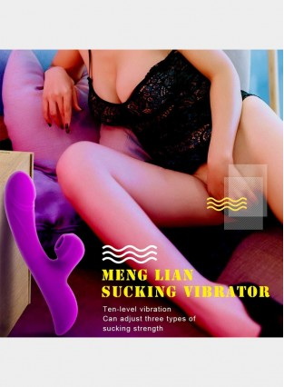 Vibrator Clitoral Sucking Heating G Spot Clit Stimulator 10 Vibration 3 Suction Patterns
